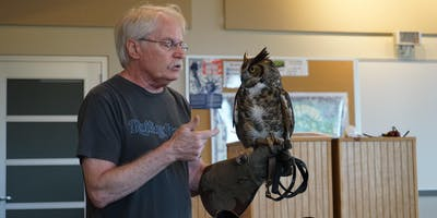 Close Encounters with Birds of Prey