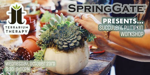 SOLD OUT- Pumpkin Succulent Workshop at Spring Gate Vineyard