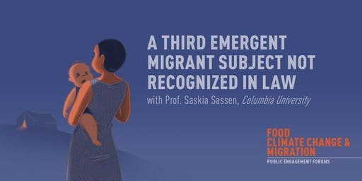 A Third Emergent Migrant Subject Not recognized in Law