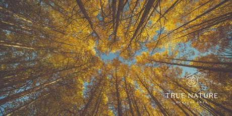 Autumn Equinox Celebration at True Nature Healing Arts tickets