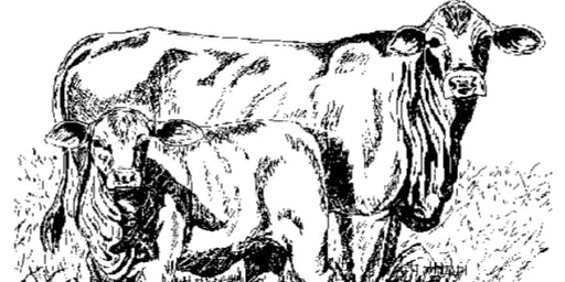 SETX Beef Symposium