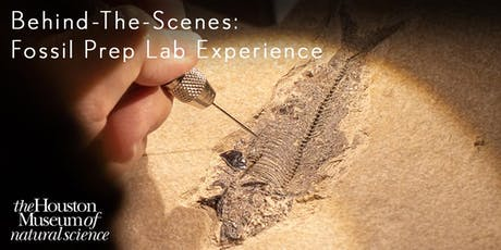 Behind-the-Scenes: Fossil Prep Lab Experience tickets
