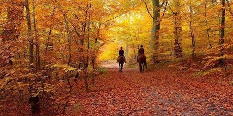 Fall Horse Camp - November 11th tickets