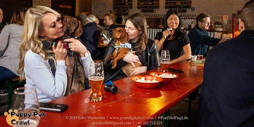 South/Port Melbourne Puppy Pub Crawl
