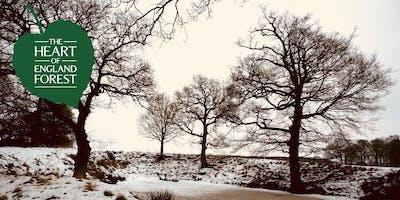 Winter Solstice Social - Woodland Walk and Festive Refreshments