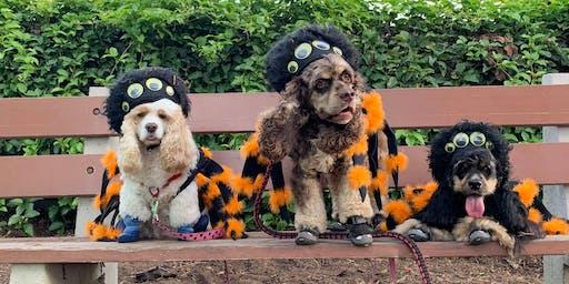 Howloween Pet Parade & Costume Contest