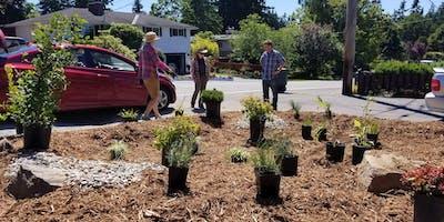 Lynnwood Rain Garden Planting Party