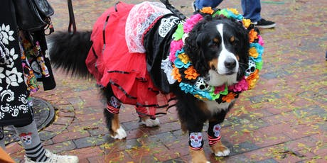 Halloween Pet Parade at Faneuil Hall tickets