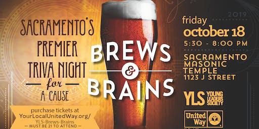 Brews & Brains