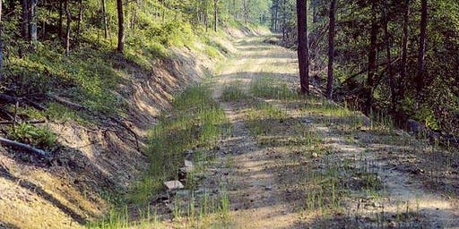 Forest & Woods Road Soil Stabilization Field Tour - Clemson Site 1