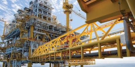 Upstream Petroleum Economics: Economics, Risk, Fiscal Analysis tickets