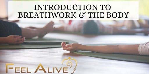 Introduction To Breathwork & The Body