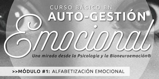 Curso en autogestión emocional - Módulo Alfabetización emocional