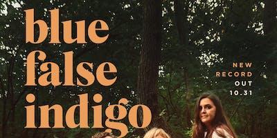 Blue False Indigo at Gold Sounds