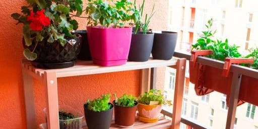 Balcony & Small Space Productive Gardening Workshop - 22 February 2020