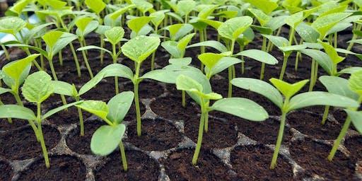 Propagating Edible Plants Workshop