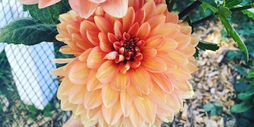 Create a Farmers Market Bouquet