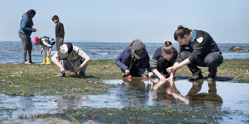 Junior Rangers Rockpool Ramble - Wilsons Promontory National Park