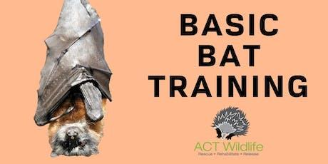Basic Bat Training tickets