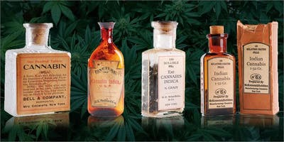 Medicinal  Cannabis for Health Professionals - MANCHESTER