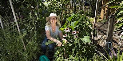 A tour of Donna's edible garden (late PM)