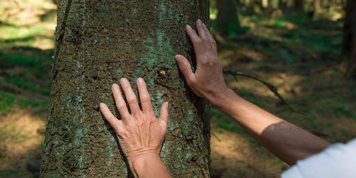 Bain de forêt 100% bien-être !