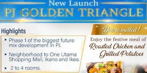 New Launch PJ Golden Triangle Mix Development