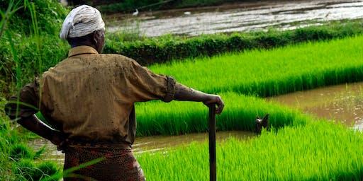 Le commerce équitable: l'avenir de la bio ?