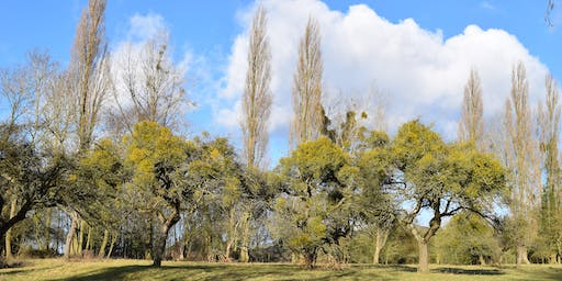 Colwall Orchard Heritage Walk