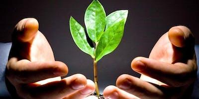 Initiation au bien être par l'énergie universelle