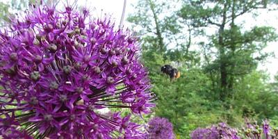 Flatford Wildlife Garden Climate Strike