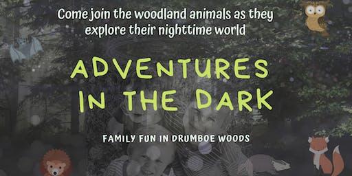 'Adventures in the Dark' - Family Fun Event