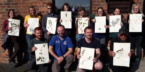 Herbarium Training Part II - 18-35s