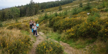 Camino Preparation Walk - Fairy Castle Loop Walk tickets