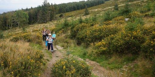 Camino Preparation Walk - Fairy Castle Loop Walk