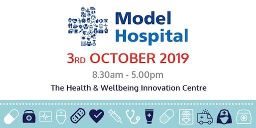 The Model Hospital Visit