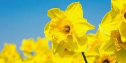 Spring Equinox Sister Circle