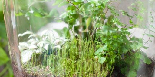 Herfstvakantie Workshop Terrarium in een pot voor Kids