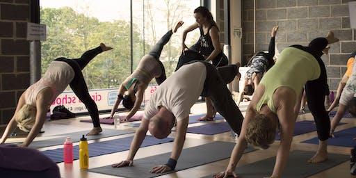 Beginners Yoga 4 week Course