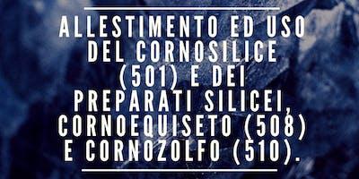ALLESTIMENTO ED USO DEL CORNOSILICE E DEI PREPARATI 508, 510