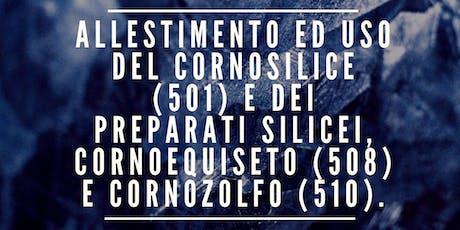 ALLESTIMENTO ED USO DEL CORNOSILICE E DEI PREPARATI 508, 510 biglietti