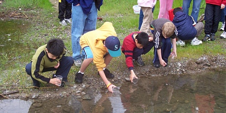 Trout in The Classroom Teacher Training 2020- East Bay tickets