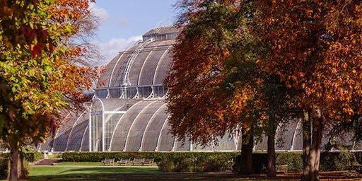 Social Event with friends and family at Kew Gardens