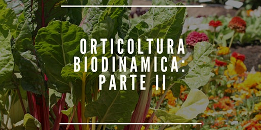 ORTICOLTURA BIODINAMICA. SECONDA PARTE