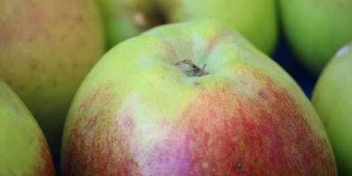 Quince & Apple Day at Norton Priory 2019