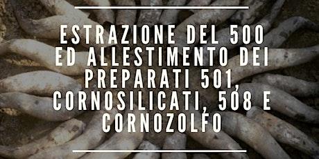 ESTRAZIONE DEL 500 ED ALLESTIMENTO DEI PREPARATI biglietti