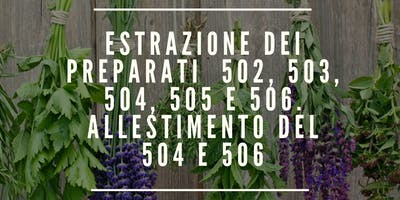 ESTRAZIONE DEI PREPARATI , ALLESTIMENTO DEL 504 E 506
