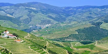 Wine Class - Wines of Portugal! tickets