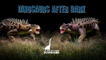 """Dinosaurs After Dark"""