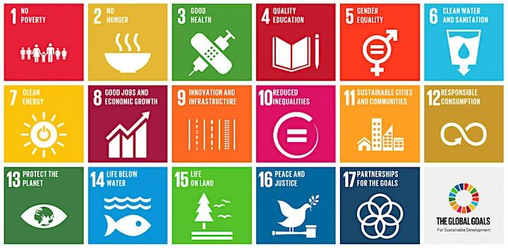 Immagine Come accendere una cultura sostenibile individuale e aziendale